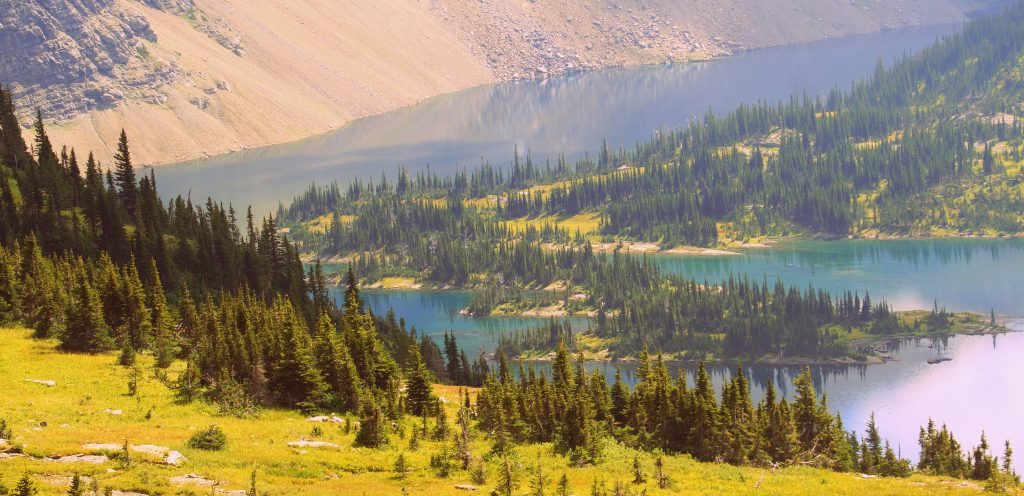 Pine trees, lakes, and mountain slopes at the Glacier National Park in Montana