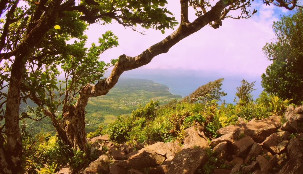 View of the Caribbean Sea from the top of Gros Piton