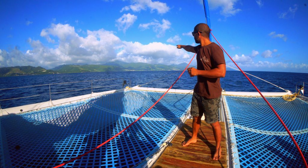 Searching for whales in Dominica