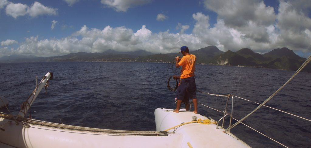 Using a hydrometer to find whales in Dominica